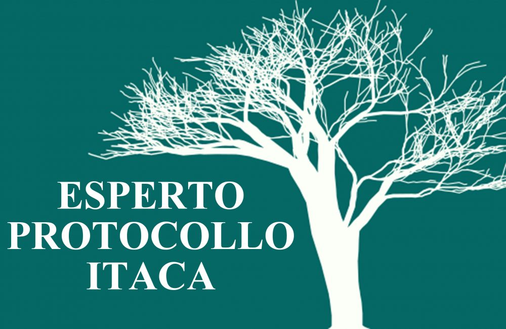 ITACA (2)